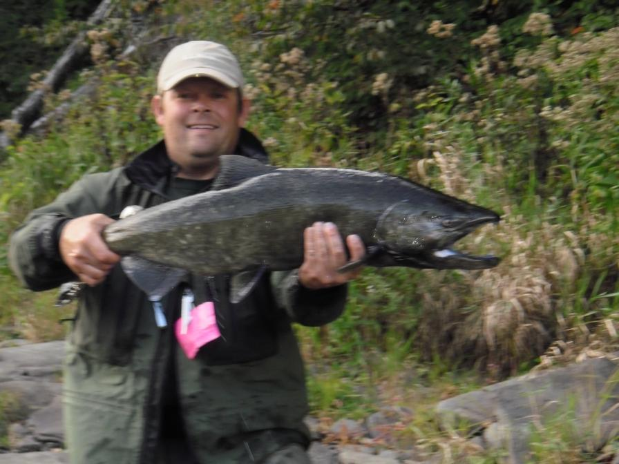 Salmon steelhead and brown trout fishing in new york state for Salmon fishing season ny