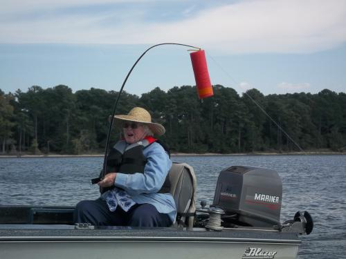 jug noodle fishing Pinterest for Jug Fishing